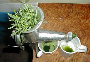 Extracting wheatgrass juice with a manual juic...