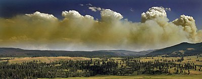 Wildfire in Yellowstone Natinal Park produces Pyrocumulus clouds-edit2.jpg