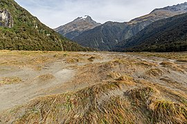 Wilkin River Basin, Otago, New Zealand.jpg