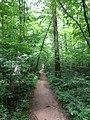 Winston County, AL, USA - panoramio (8).jpg