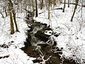 Winter-waterfall-stream - West Virginia - ForestWander.jpg