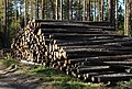 Woodpile Haukipudas Oulu 20150913 01.JPG