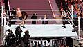 WrestleMania 31 2015-03-29 19-53-39 ILCE-6000 0001 DxO (18112992162).jpg