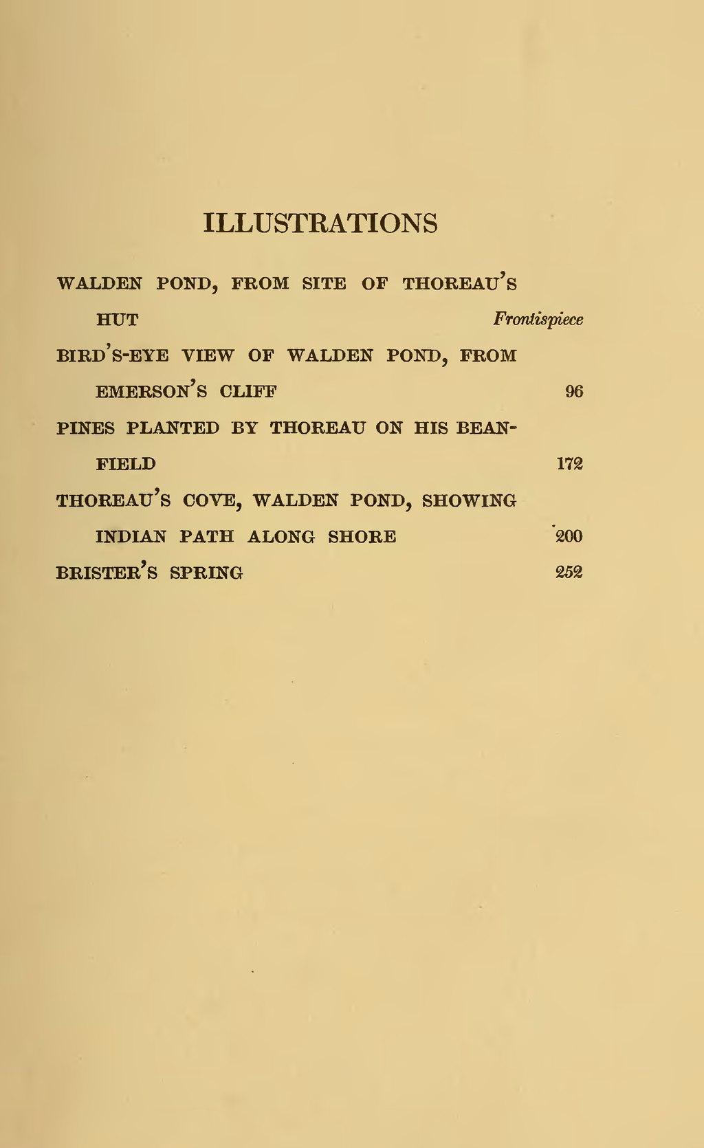 thoreau bean field essay in walden