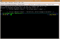 XFCE Terminal--February 2007.png