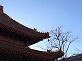 Yonghe Temple Roof.jpg