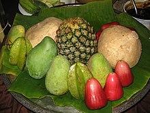Pertanian tropika - Wikipedia Bahasa Melayu, ensiklopedia ...  Pertanian tropi...