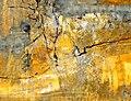 Zinnia Clavo 2008 Orilla del rio II.jpg