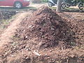 """a Compost pit"".jpg"
