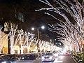 (東京都) 表参道の夜景です。歩道から少し。ずっと連なるそのイルミネーション、けやき並木を照らし出すのは90万個ものLEDです。明治神宮鎮座九十 - panoramio.jpg