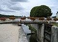 Écluse de la Patache between the Canal d'Orléans and the Loire river. Combleux, au lieu-dit la Patache, département du Loiret, France. - panoramio (1).jpg