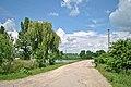 Автошлях С201517 «Товстолуг — Кип'ячка» - 19064790.jpg