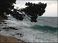 Брела - panoramio (30).jpg