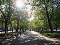 В парке - panoramio (5).jpg