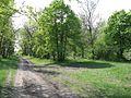 Дендрологічний парк 192.jpg
