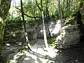 Лабиринт с белыми камнями в тисо-самшитовой роще.jpg