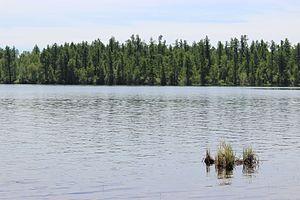 Azas Nature Reserve - Azas lake