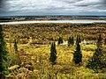 Осенний HDR - panoramio.jpg