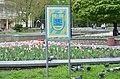 Охоронна табличка у сквері ім. Т.Г. Шевченка у Хмельницькому.jpg