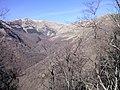 По пътя за хижа Хубавец, резерват Стара река... 31.jpg