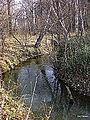 Река Ельцовка 08.jpg