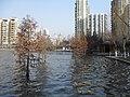 南京莫愁湖公园 - panoramio (8).jpg