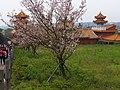 天元宮 Tianyuan Temple - panoramio (11).jpg