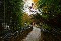 梵魚寺の紅葉 - panoramio.jpg