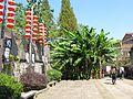 皤滩古镇的香蕉树 - panoramio.jpg