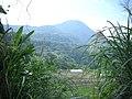 行義路至陽明山 - panoramio - Tianmu peter (56).jpg