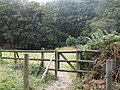 -2019-08-11 Footpath from Overstrand to Cromer.JPG