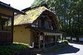 014michinoku folk village3872.jpg