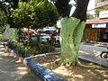 08912jfCalabash Road Streets Barangays Sampaloc Manilafvf 05.jpg