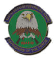 124th Security Forces Squadron.png