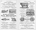 1868 ads Lowell Directory Massachusetts p376.png