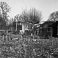 1969 Jardins ouvriers au CNRA-8-cliche Jean Weber.jpg