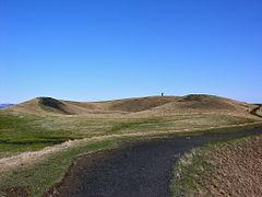 2008-05-21 13 33 05 Iceland-Skútustaðir.jpg