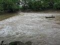 2009-06-11 Fishin' the Swollen, Muddy Spoon River at Bernadotte.jpg