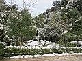 2010年12月15日夜里的那场雪 - panoramio (21).jpg
