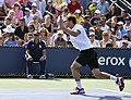 2013 US Open (Tennis) - Albert Ramos (9664750693).jpg