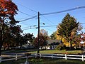 2014-10-30 09 23 07 Suburban area along Terrace Boulevard during autumn leaf coloration in Ewing, New Jersey.JPG