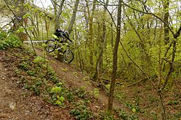 Downhill mountain biking