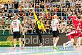 2016160193318 2016-06-08 Handball Deutschland vs Russland - Sven - 1D X II - 0385 - AK8I2346 mod.jpg
