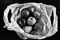 2016 366 250 Still Life with a Plastic Bag (29477430536).jpg