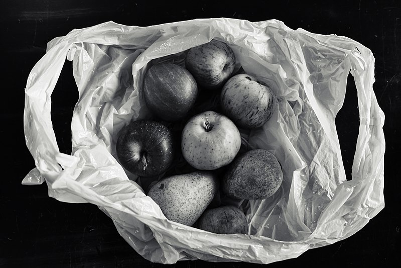 File:2016 366 250 Still Life with a Plastic Bag (29477430536).jpg