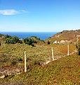 2705 Colares, Portugal - panoramio (7).jpg
