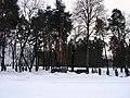 32-115-0019 Пам'ятний знак «Пам'яті чорнобильцям».jpg