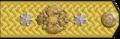 4-06z. Придворный кавалер, действительный статский советник, 1901–1910 гг.png