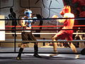 4th Boxing Gala E. Mavropoulos5.JPG