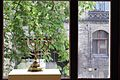7324 Synagoga Pod Białym Bocianem. Foto Barbara Maliszewska.jpg